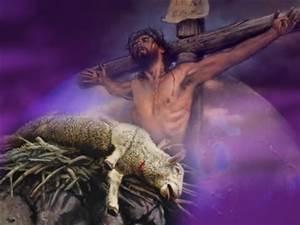 jesus lamb